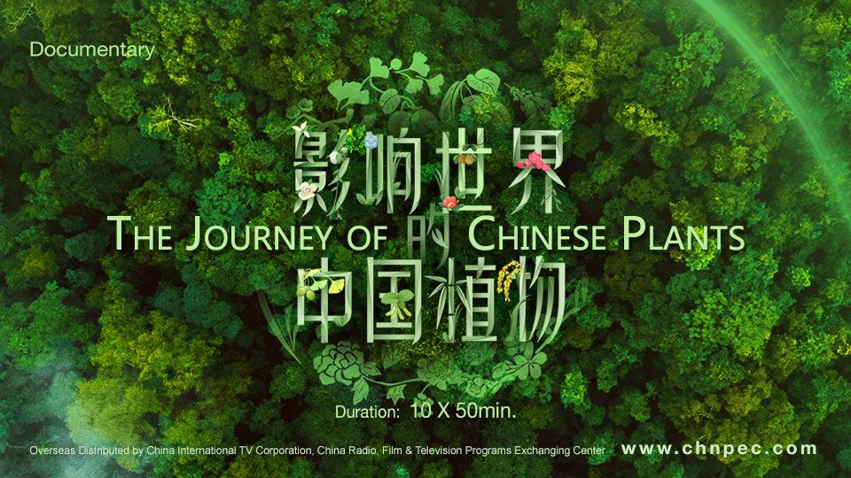 6.-The-Journey-of-Chinese-Plants.jpg