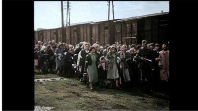 Auschwitz-Untold.jpg