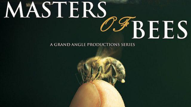 Masters-of-Bees.jpg