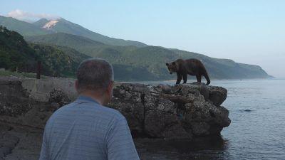 bearman_01.jpg